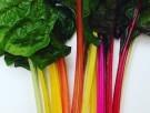 Kleurrijke risotto met snijbiet | Uit de keuken van Mary J.