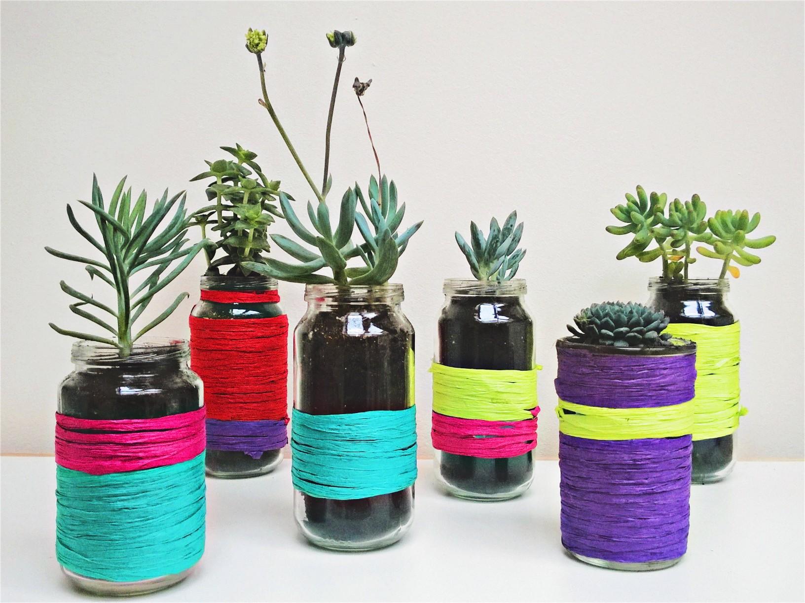 Hippe vetplantjes en DIY bloempotje